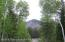 SOUTH FOREST, Star Valley Ranch, WY 83127