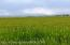 200 Acres of meadow Land, Available Building Sites.