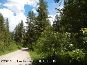 TBD N LEIGH CREEK RD., Alta, WY 83414