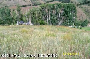 LOT 105 YOUNG LN, Afton, WY 83110