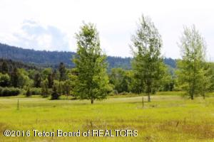 16 WINGER CIRCLE, Victor, ID 83455