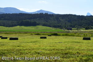 490 YELLOW ROSE DR, Alta, WY 83414