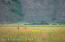 TRACT 4 SPRING GULCH RANCH, Jackson, WY 83001