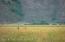 TRACT 1 SPRING GULCH RANCH, Jackson, WY 83001