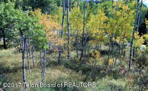--- REDWOOD ROAD, Star Valley Ranch, WY 83127