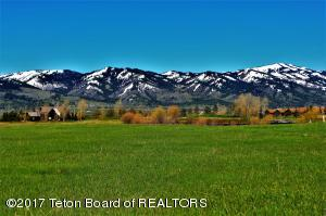 12 HASTINGS DR, Victor, ID 83455