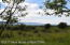 40 ACRE RANCH IN ALTA, WY RD, Alta, WY 83414