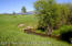 1000 W JACKNIFE ROAD, Freedom, ID 83120
