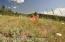 PONY CREEK RD, Tetonia, ID 83452
