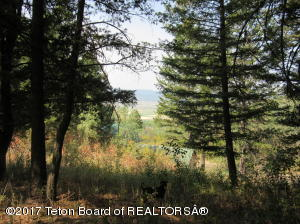 LOT 64 ALPENGLOW DR, Star Valley Ranch, WY 83127
