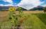 605 ASTER LOOP, Alpine, WY 83128