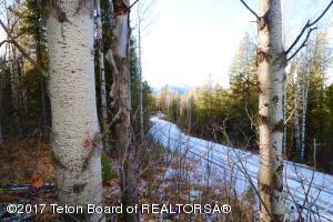 BLACK BEAR LANE, Alpine, WY 83128