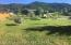 448 GREYS RIVER LOOP, Alpine, WY 83128