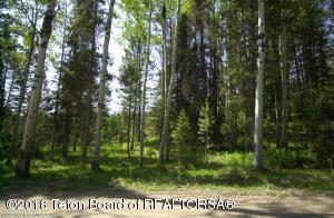 6500 BLUEBELL TRAIL, Wilson, WY 83014