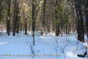 LOT 89 FIR PLACE, Star Valley Ranch, WY 83127