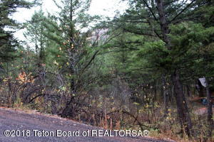 PLAT 7 LOT 75, Star Valley Ranch, WY 83127