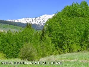 E 420 EAST ASPEN MEADOWS LANE, Alta, WY 83414