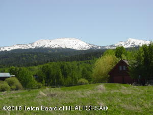 195 E E. LOCHEN FEN LANE, Alta, WY 83414