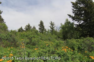 3251 CANYON CREST DR, Victor, ID 83455