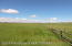 North Boundary Of The Property And Looking West. Awesome Hay Land!
