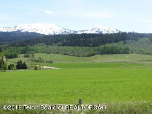465 YELLOW ROSE DR, Alta, WY 83414