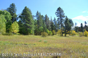 LOT 24 ASPEN LN, Alpine, WY 83128