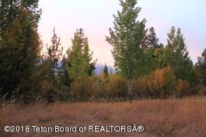 5075 W EAGLE ROAD, Wilson, WY 83014