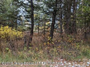 REDWOOD DRIVE, Star Valley Ranch, WY 83127