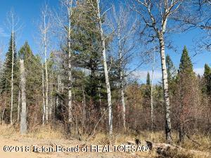 LOT 14 ALPINE MEADOW LOOP, Alpine, WY 83128