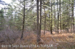 LOT 32 N FOREST, Star Valley Ranch, WY 83127
