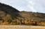 2491/2485 N FISH CREEK RD, Wilson, WY 83014