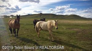STACKER DR, Pinedale, WY 82941