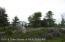 overlooking Pine Creek