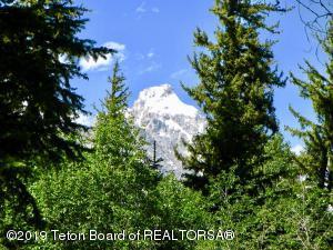 Grand Teton View Peaking Through Trees