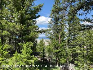 LOT 73 QUILL CT, Dubois, WY 82513