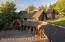 1100 & 990 PINE SISKIN, Jackson, WY 83001