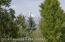420 E SAGEBRUSH DRIVE, EAGLE C, Jackson, WY 83001