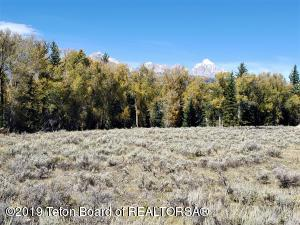300 REED DRIVE, Jackson, WY 83001