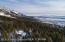 6705 SUBLETTE WOODS RD, Teton Village, WY 83025