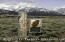 220 REED DR, Jackson, WY 83001