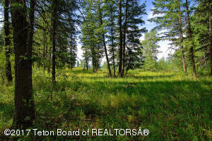 .97 ACRES LONE STAR ROAD, Bedford, WY 83112