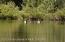 3100 N FISH CREEK RD, Wilson, WY 83014