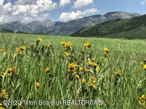 Incredible mountain top land with panoramic views of Star Valley. Easy road access with 60 foot easement in place. Underground electric and phone available throughout the property making this a very develop-able acreage. Existing well located on the upper parcel could possibly be used for a community water source or an individual home. Contact listing broker for more info.