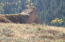8755 HORSE CREEK MESA ROAD, Jackson, WY 83002