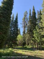 Build your dream home here!  Beautiful location with incredible views!  Timbered, private and serene.  No CC&R's or HOA's.  This lot is a rarity in Teton County!  Listing Agent is the significant other of Owner.