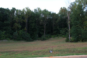 Lot #28 Abermar Subdivision, New Albany, MS 38652