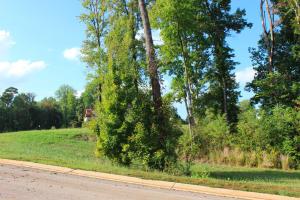 Lot #37 Abermar Subdivision, New Albany, MS 38652