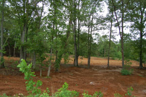 Lot 3 Torrington Hills Dr., New Albany, MS 38652