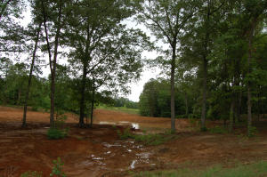 Lot 4 Torrington Hills Dr., New Albany, MS 38652