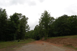 Lot # 10 Torrington Hills Dr., New Albany, MS 38652